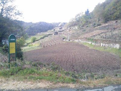 San Facundo de Rivas do Miño - Lugo Image_14