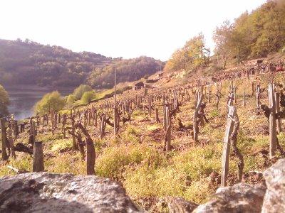 San Facundo de Rivas do Miño - Lugo Image_19