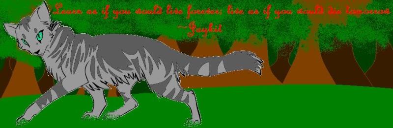 Making Pics - Page 2 Jaykit11