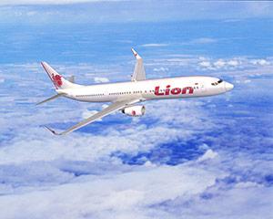 Livraisons d'avions - Page 2 Lion_a10