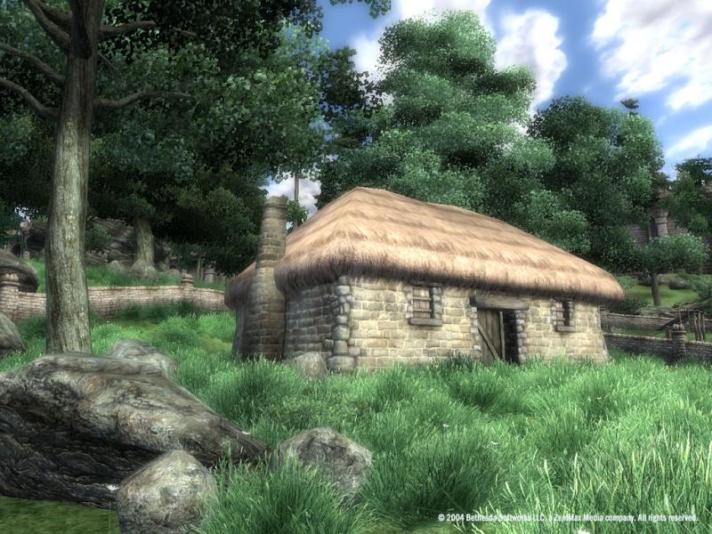 The Elder Scrolls IV: Oblivion | Awesome RPG! Tes_iv10