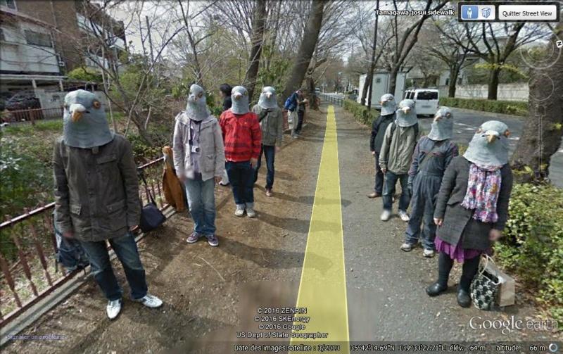 Trouver les images Street View qui font le buzz! Pigeon10