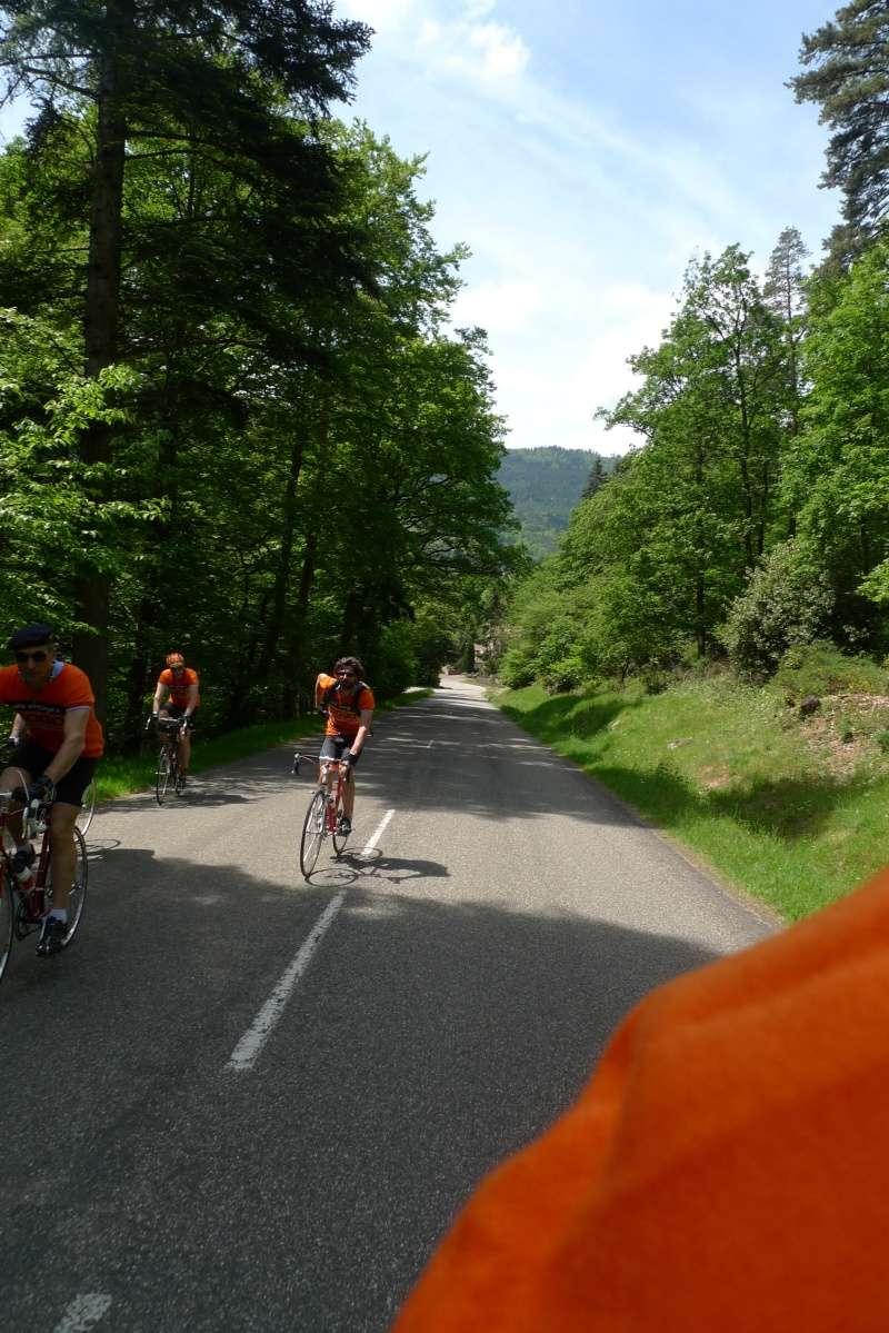 Les oranges outans fêtent le printemps en Alsace - 21 mai 2016 - Page 5 P1070238