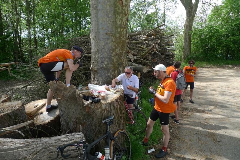 Les oranges outans fêtent le printemps en Alsace - 21 mai 2016 - Page 5 P1070314