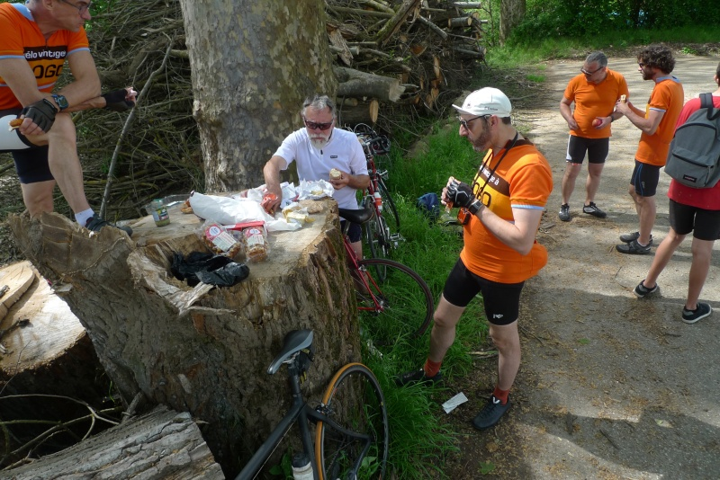 Les oranges outans fêtent le printemps en Alsace - 21 mai 2016 - Page 5 P1070319