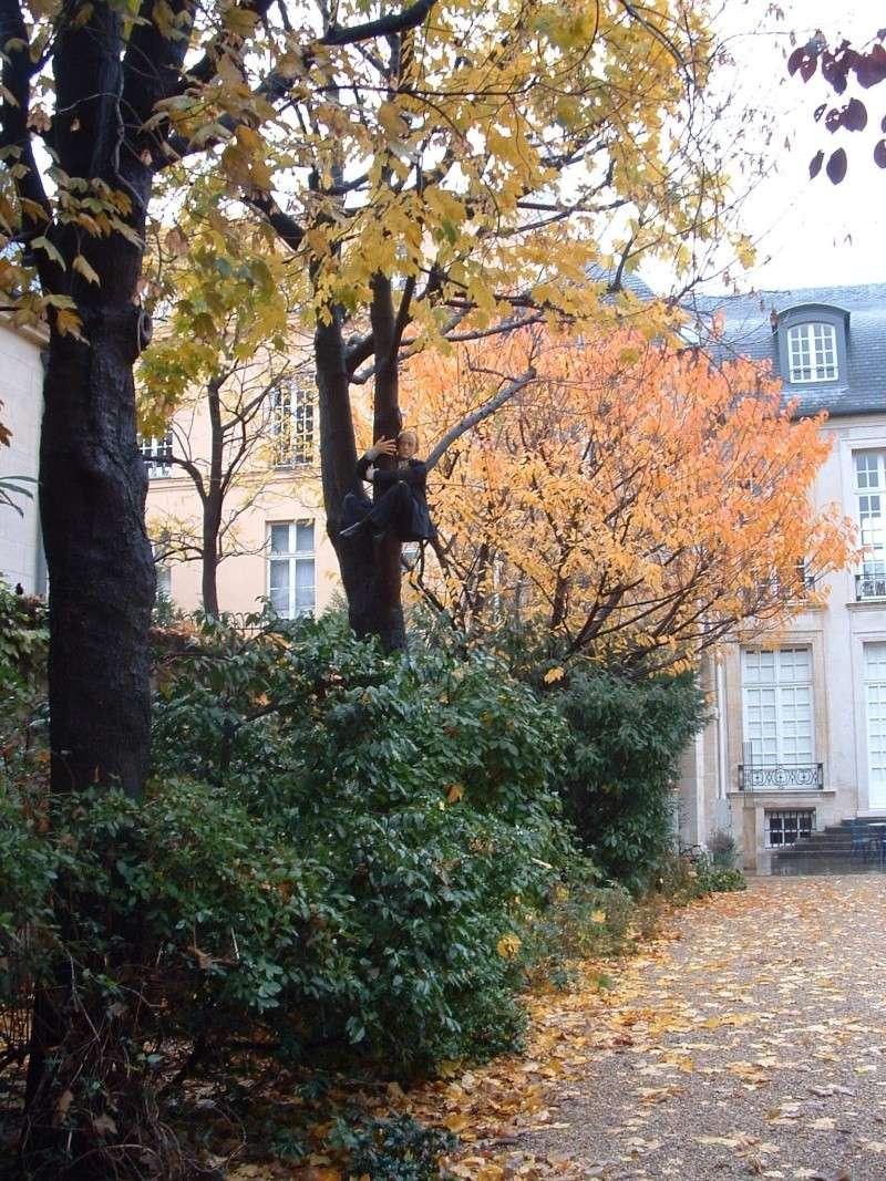 L'automne à Paris ou ailleurs Paris218