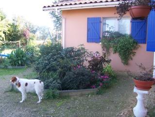 Le petit jardin....je ne pense pas vivre une éternité!!! 100_0111