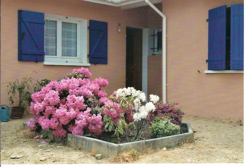 Le petit jardin....je ne pense pas vivre une éternité!!! Image-11