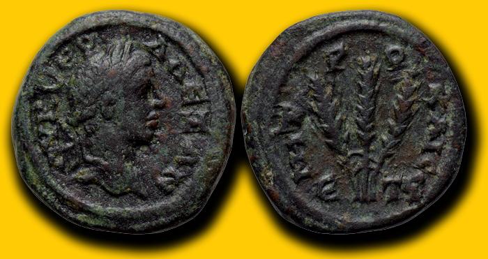 Bronze Colonial de Sévère Alexandre pour Caesaré en Cappadoce ... Cappad10