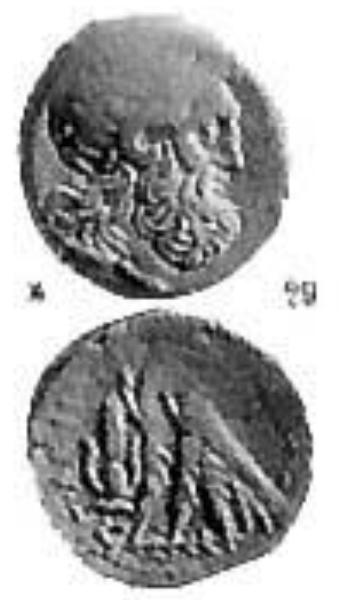 bronze Lagide avec une contremarque Ptolzo10
