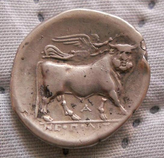 Didracma de Neapolis (actual Nápoles) Siglo III a.C. Dedicado a numismatico2013 y Ardashir Foto_011