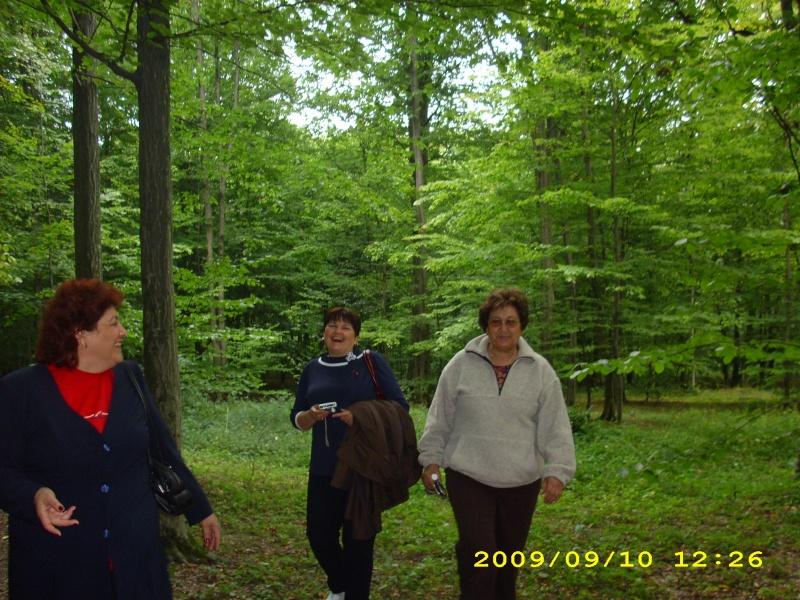 """Dumbrava Minunata""-tabara de la Muncel-Pascani 9-14 septembrie 2009 Didi1110"