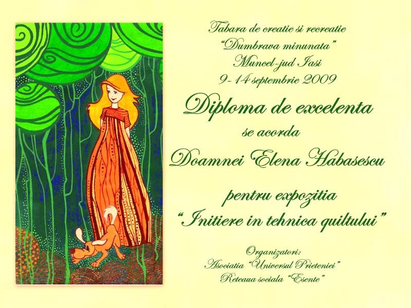 """Dumbrava Minunata""-tabara de la Muncel-Pascani 9-14 septembrie 2009 Diplom11"