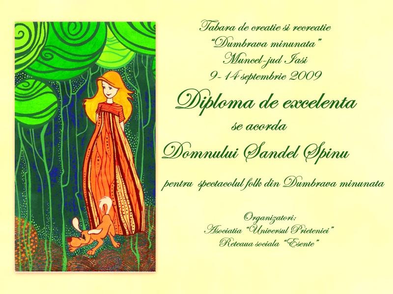 """Dumbrava Minunata""-tabara de la Muncel-Pascani 9-14 septembrie 2009 Diplom13"