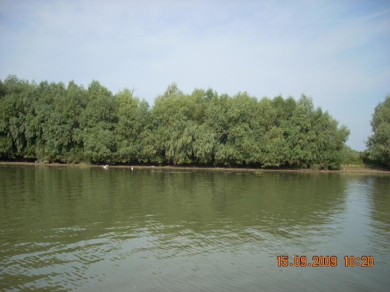 Dunarea si Delta vazute de la Mahmudia Dscn0010