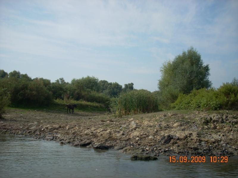 Dunarea si Delta vazute de la Mahmudia Dscn0014