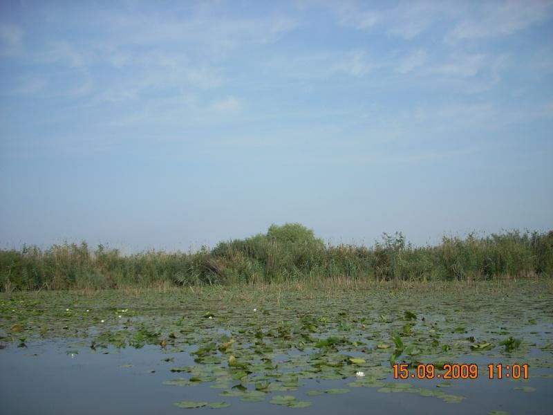 Dunarea si Delta vazute de la Mahmudia Dscn0020