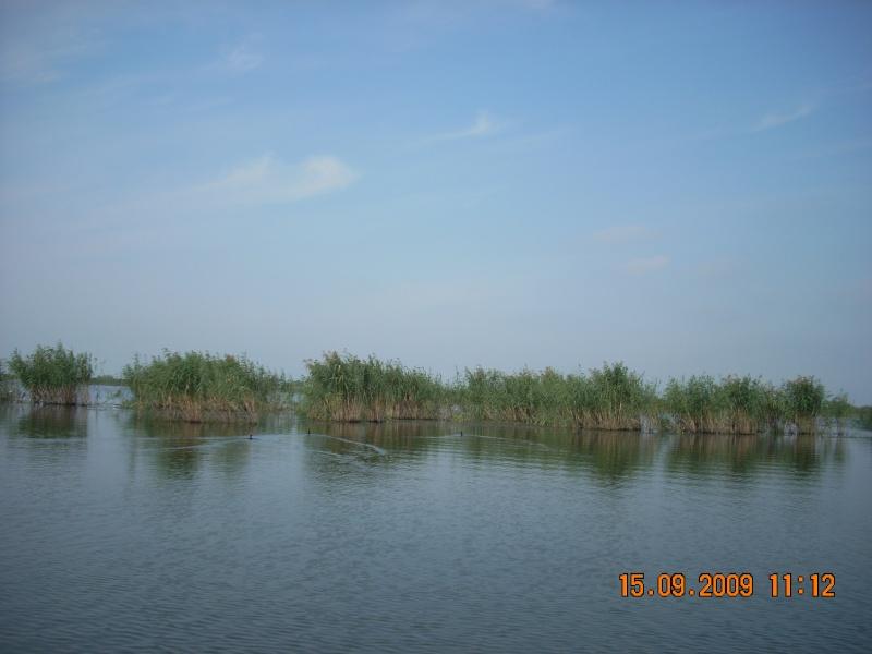 Dunarea si Delta vazute de la Mahmudia Dscn0022