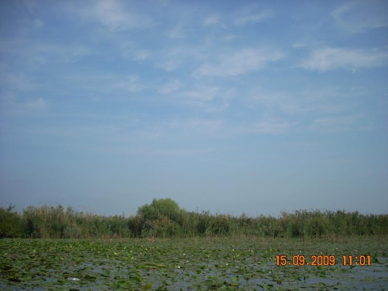 Dunarea si Delta vazute de la Mahmudia Dscn0023