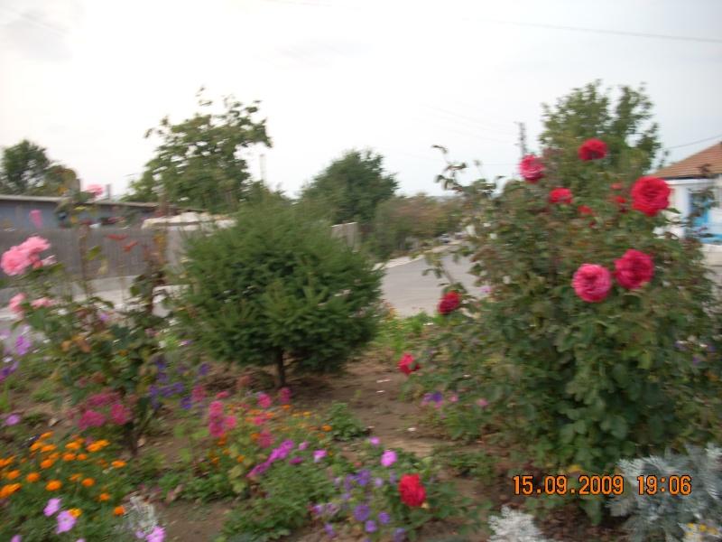 Dunarea si Delta vazute de la Mahmudia Dscn0116