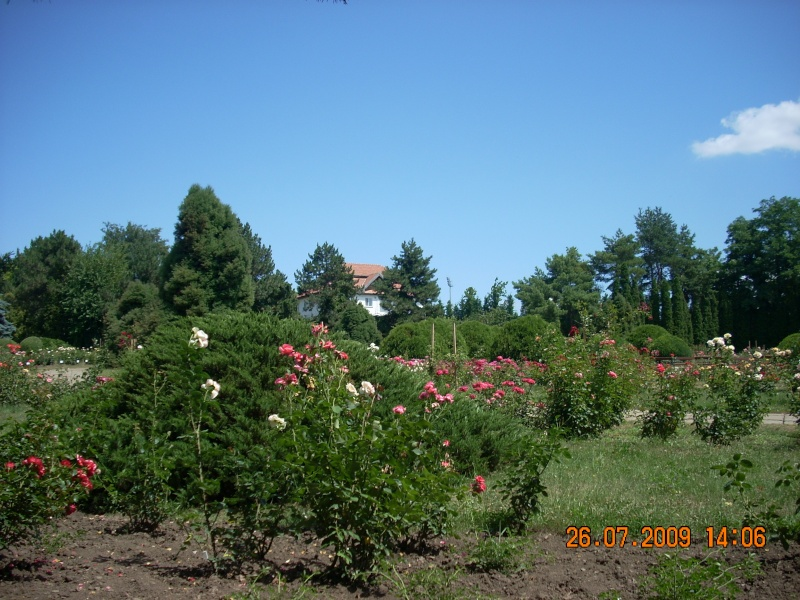 Gradina Botanica din Iasi Gradin15