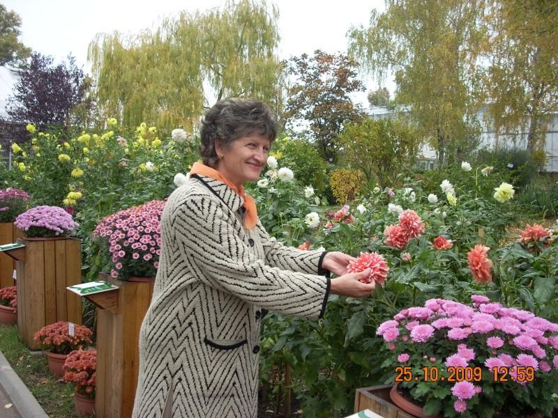 Expozitia de flori de toamna -Gradina Botanica A. Fatu-Iasi Gradin28