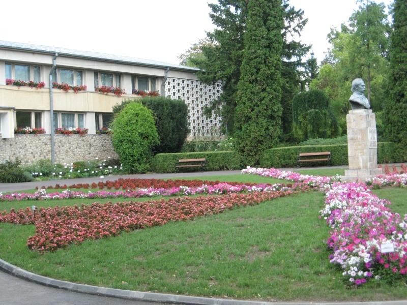 Gradina Botanica din Iasi Img_1010