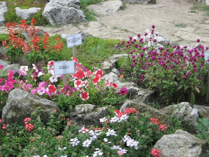 Gradina Botanica din Iasi Img_1011