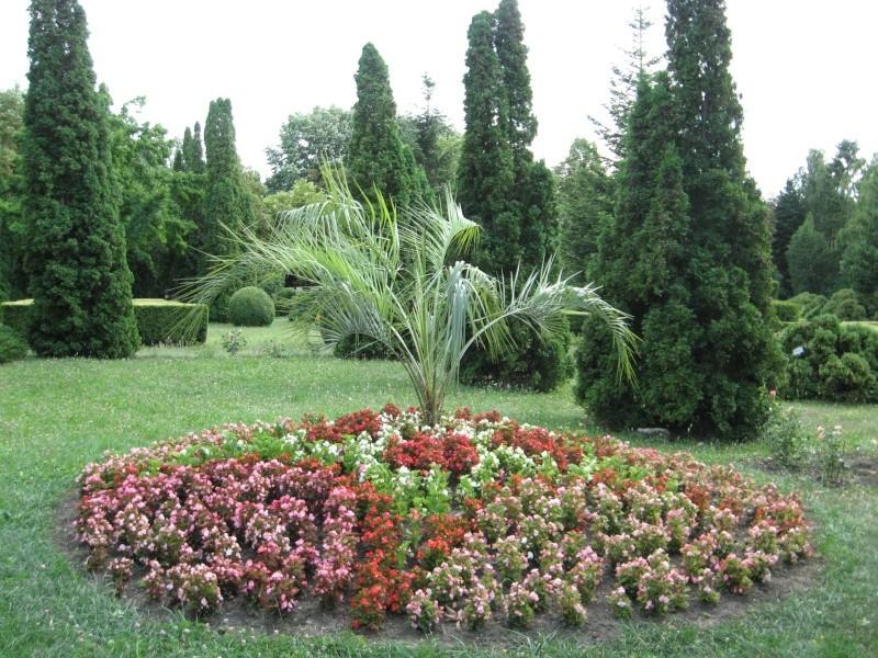 Gradina Botanica din Iasi Img_1012