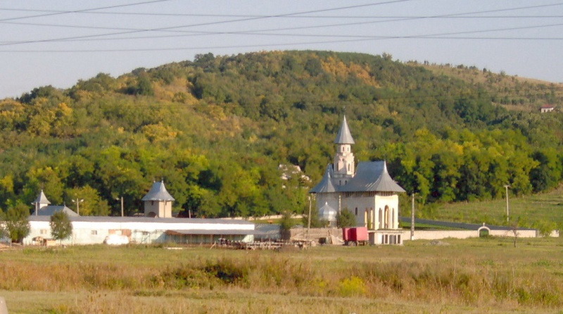 Manastirea Vladiceni -Iasi Manast10