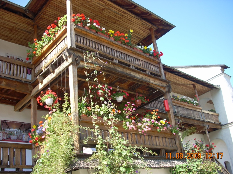 """Dumbrava Minunata""-tabara de la Muncel-Pascani 9-14 septembrie 2009 Munce120"