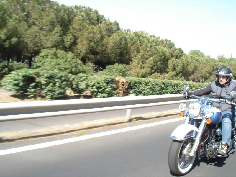 Combien de Softail sur le forum Passion-Harley - Page 3 Dsc05611