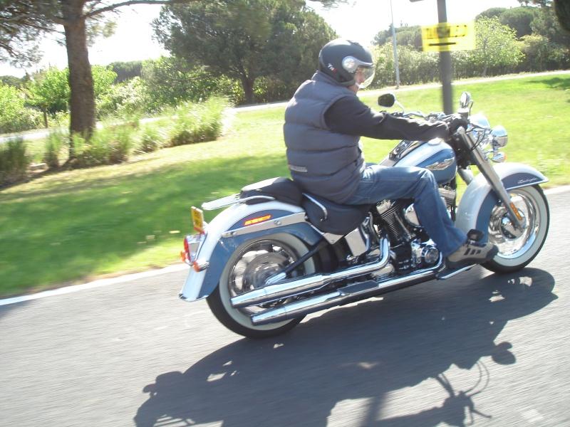 Combien de Softail sur le forum Passion-Harley - Page 3 Dsc05613