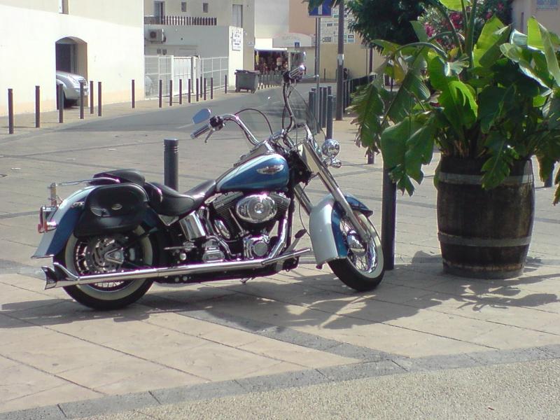 Combien de Softail sur le forum Passion-Harley - Page 3 P0607010