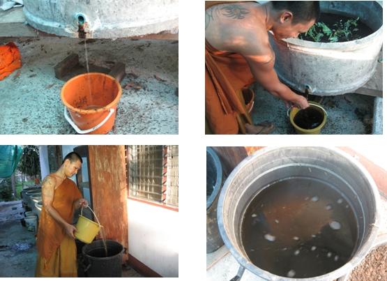 ปุ๋ยอินทรีย์--ปุ๋ยมูลไส้เดือน 2009-016