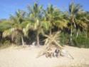 J0n4s au pays des Kangourous Cimg0510