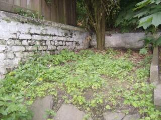 je ne sais pas quoi faire de mon jardinet Photo_10