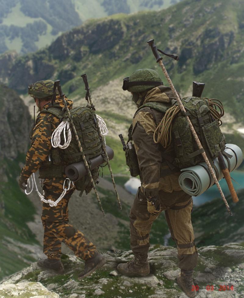 34e Brigade De Montagne, Caucase 2014 14611814