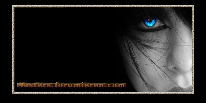 masters.forumieren.com