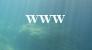 http://aqualoisirspassion.forumactif.org