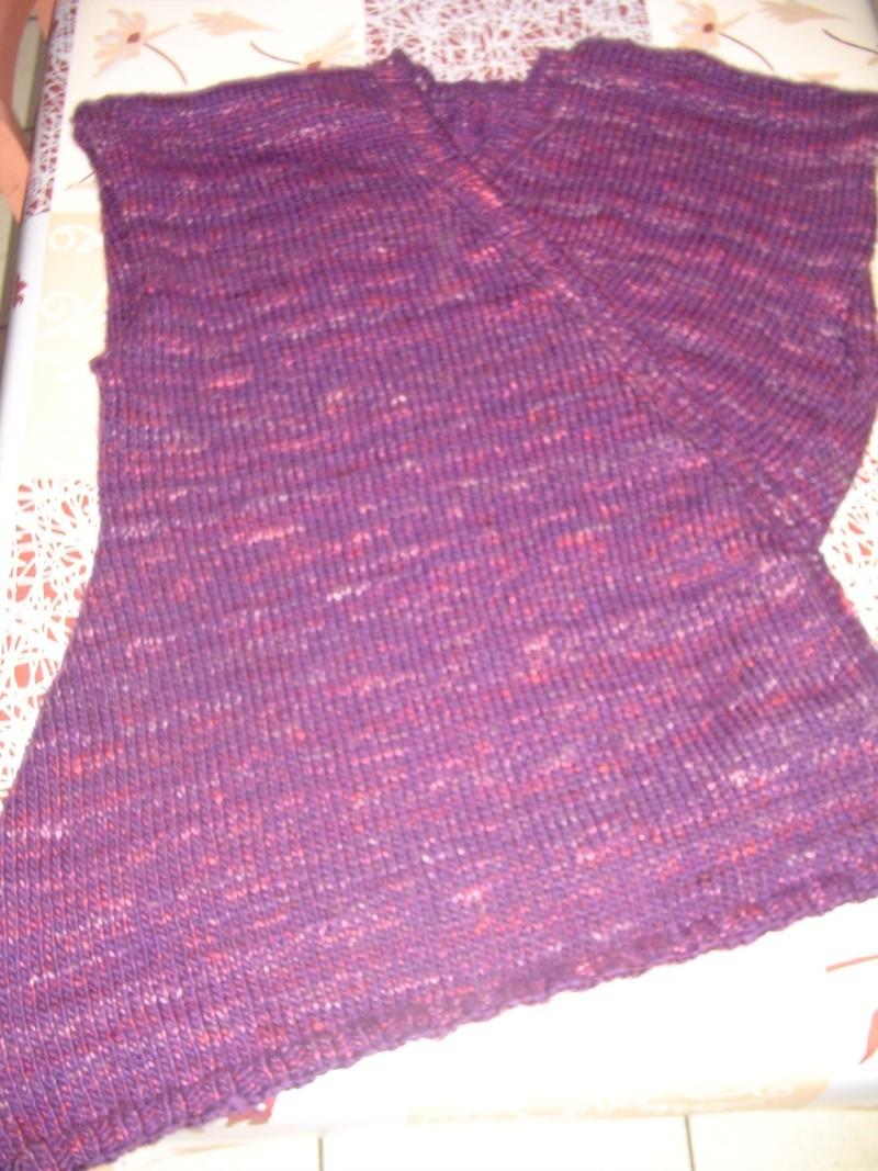 les tricots d'isadef Dsc05727