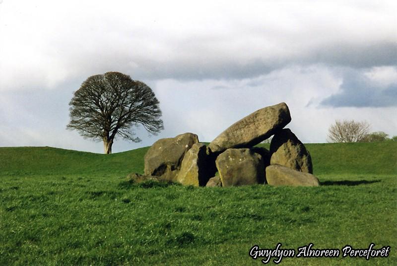 Le Giant's Ring - Comté d'Antrim - Irlande du Nord Giant_11