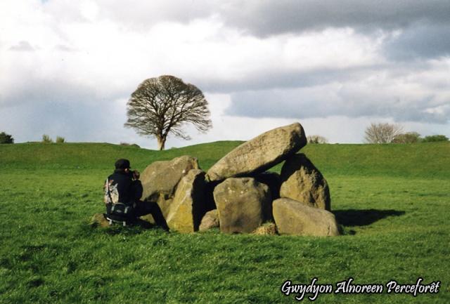 Le Giant's Ring - Comté d'Antrim - Irlande du Nord Giant_14