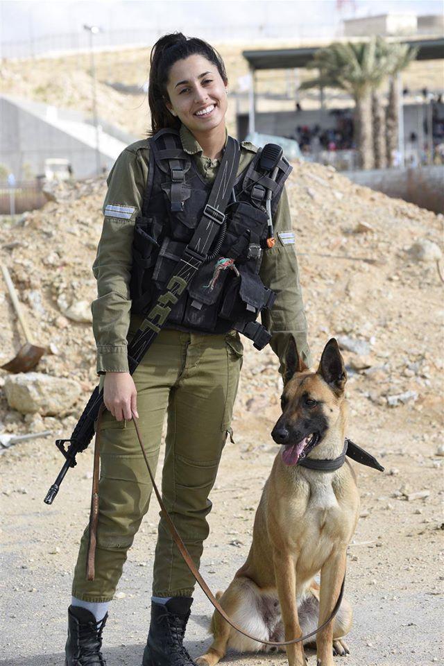 le mois de juin : les maitres chiens de l'armée d'israel 13248410