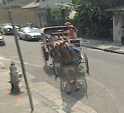 STREET VIEW : Les carrosses, les calèches dans le monde Sans_t23