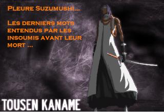 Fiche technique de Tousen Kaname Tousen10