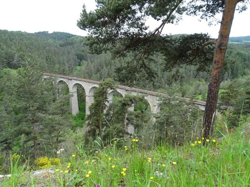 6R6 dans le Cantal Dsc00816