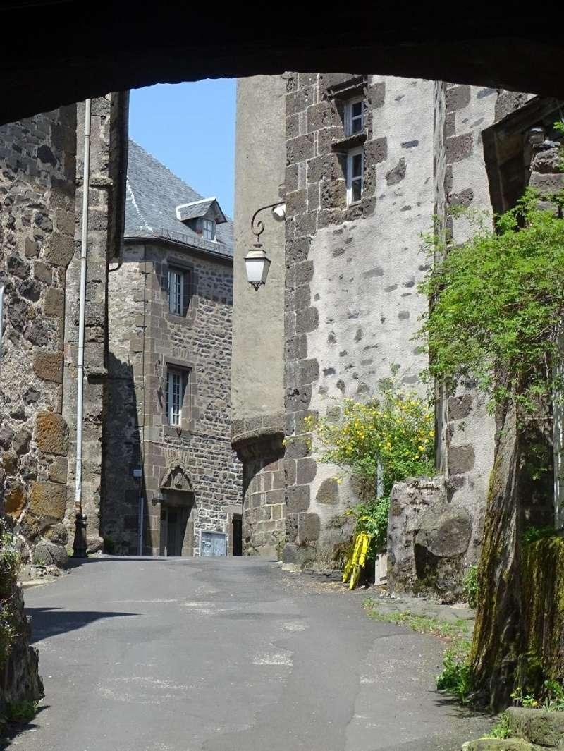 6R6 dans le Cantal Dsc01015