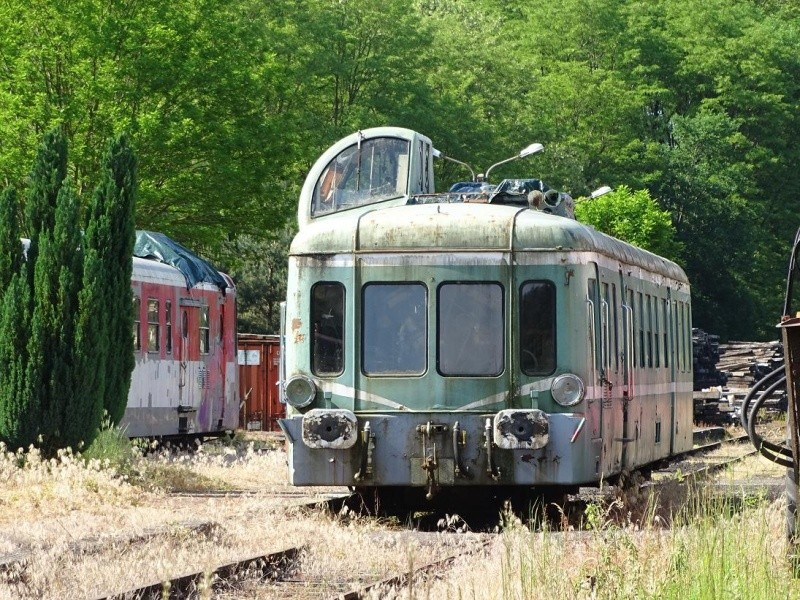 6R6 dans le Cantal Dsc01019