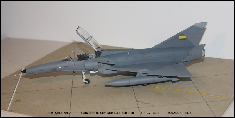 CHEETAH D in SouthAmerica - Page 3 Chet210